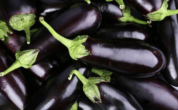 Patlidžan je vrlo fleksibilno povrće