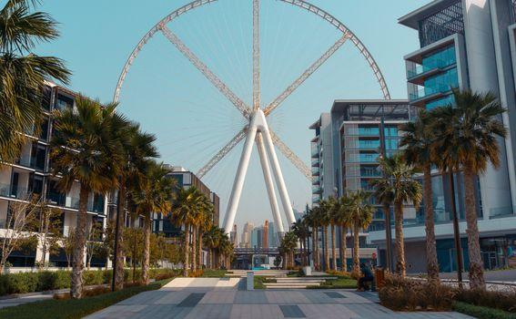 Ain Dubai - 4