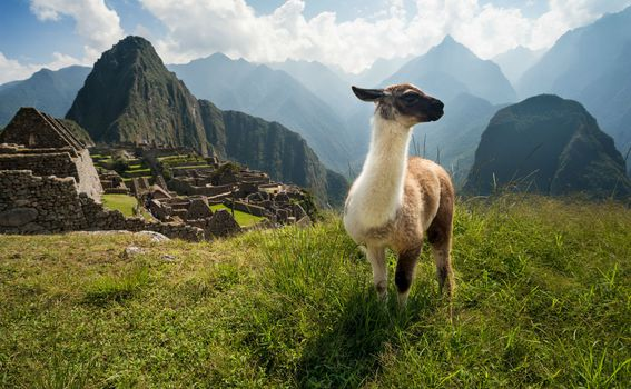 Peru - 1