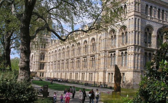 National History Museum - 5