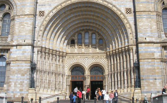 National History Museum - 6
