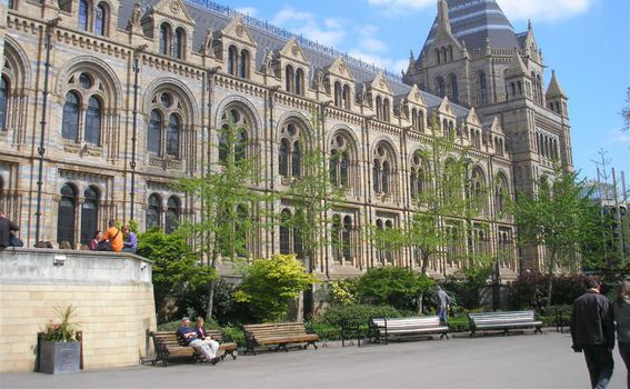 National History Museum - 8