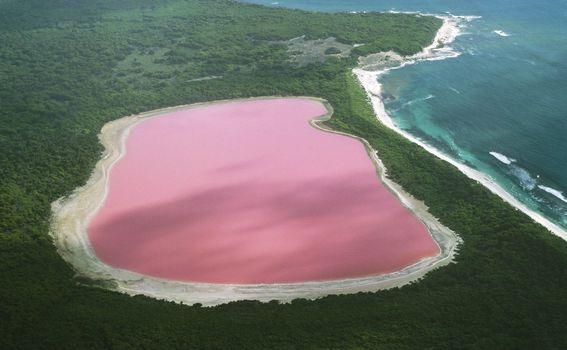 Ružičasto jezero u Australiji - 1