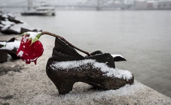 Cipele na obali Dunava - 1
