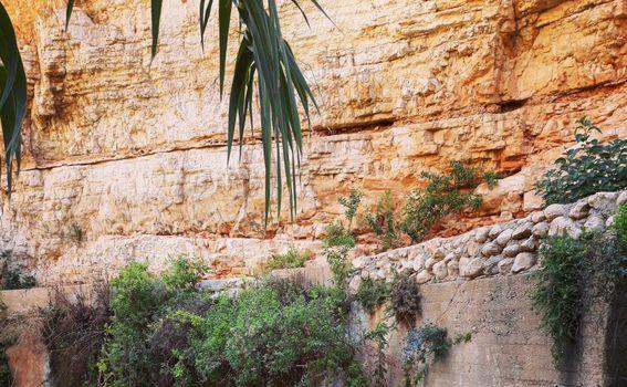 Zapadna Obala, Palestina - 9