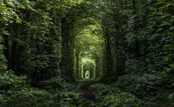 Tunel ljubavi - 2