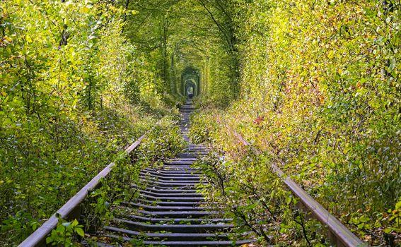 Tunel ljubavi - 5