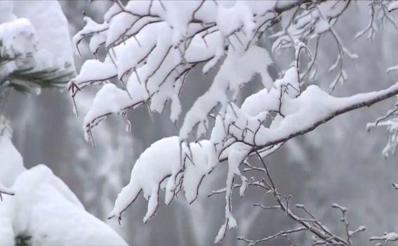 Snijeg na Plitvičkim jezerima - 4