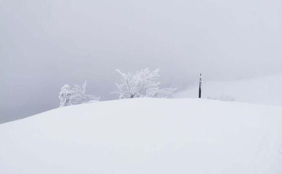 Snježnik - 8