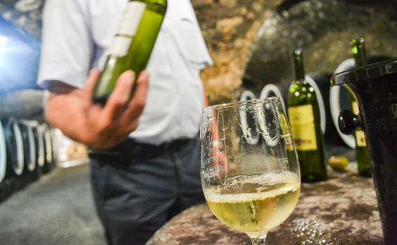 Izvrsna kutjevačka vina mamac su za turiste