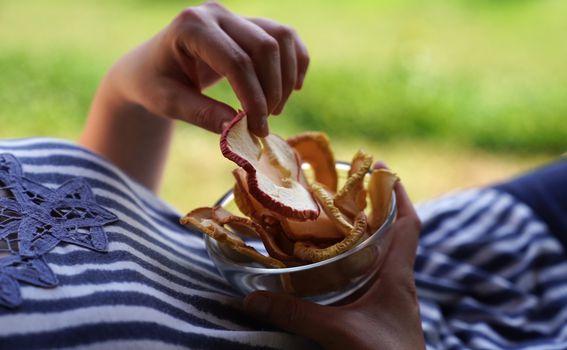 Međimurski čips od jabuke u Vinskoj kući Hažić
