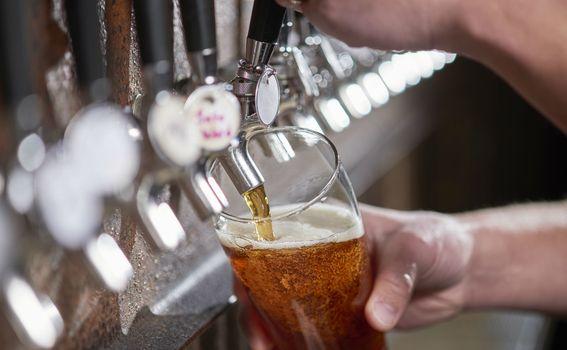 Pivo - 1