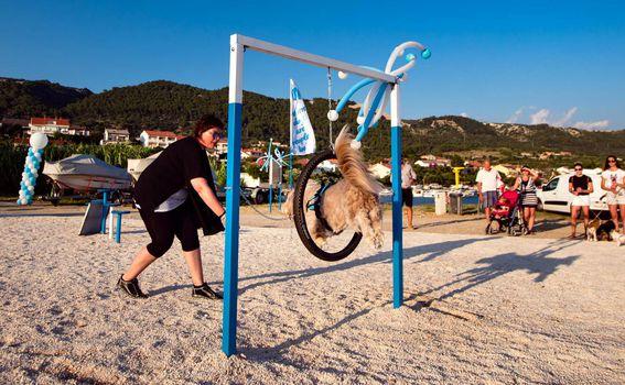 Monty\'s Dog Beach & Bar - 6