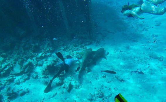 Nomadi na Maldivima - 11