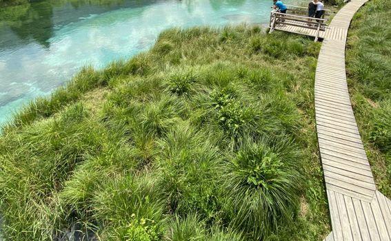 Prirodni rezervat Zelenci - 5