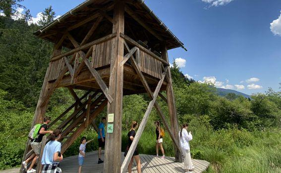 Prirodni rezervat Zelenci - 6