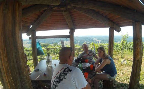 Degustacija vina u sklopu Green Gastro