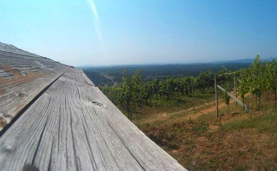 Krajobraz Vivodine