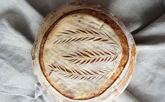 Kruh Anite Šumer - 7