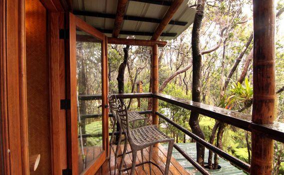 Kućica na stablu u blizini aktivnog vulkana
