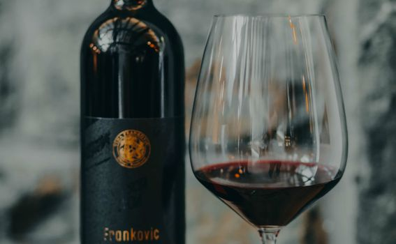 Vina Franković - 1