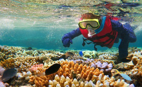 Veliki koraljni greben - 3