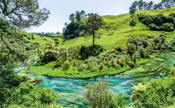 Novi Zeland - 4