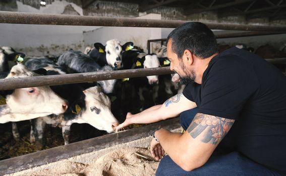 David Skoko na farmi obitelji Paček