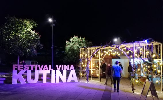 Festival vina - 4