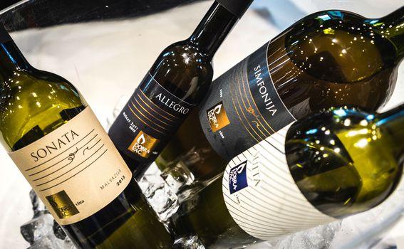 Kušanje vina u Laubi - 4