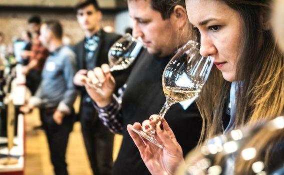 Na kušanju je sudjelovalo 100 vinarija