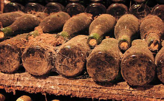 Vinska arhiva broji 70 tisuća boca
