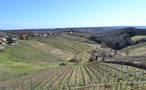 Ovaj kraj poznat je i po dobrim vinima