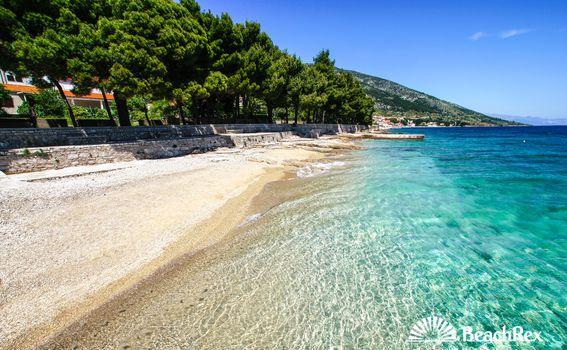 Plaža čempresa, Bol