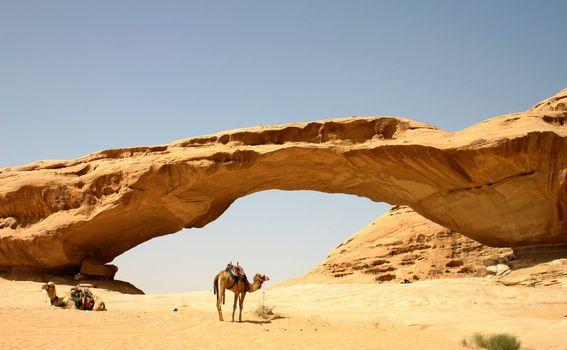 Wadi Rum - 1