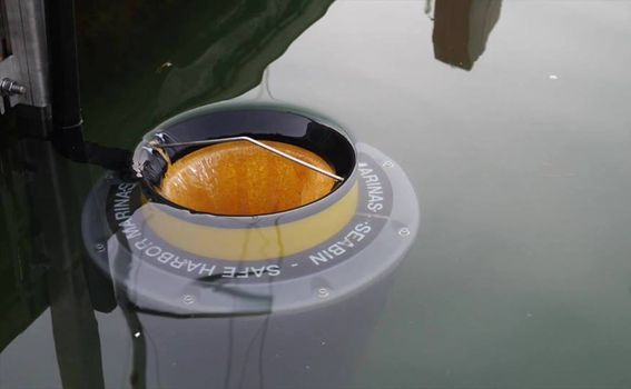 Seabin usisava vodu s površine, smeće zadrži, vodu vrati