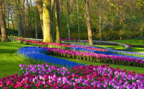 Najljepši vrtovi svijeta - 2