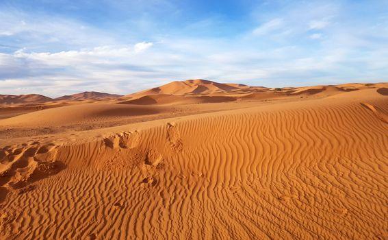 Sahara (Merzouga)