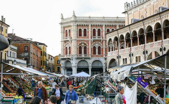 Padova - 1