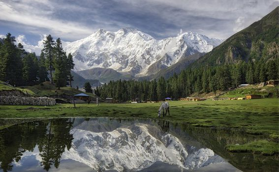 Fairy Meadows - 4