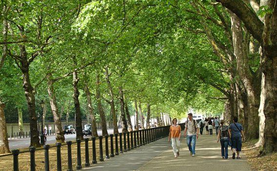 London - 6