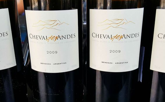 Cheval des Andes 2009.