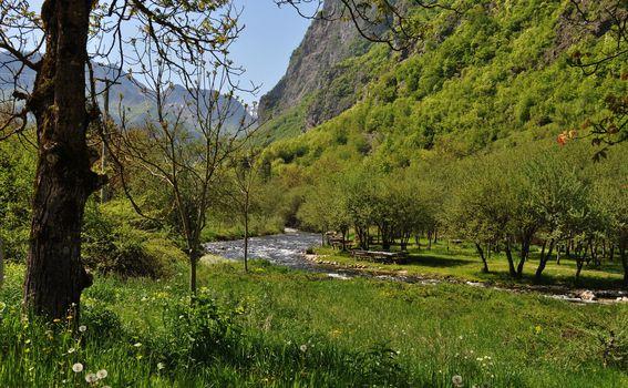 Rijeka Bašćica
