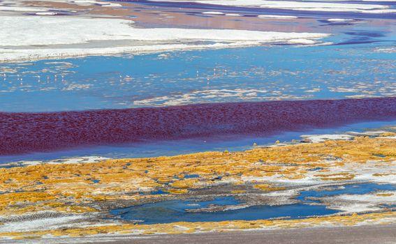 Crvena laguna u Boliviji - 3