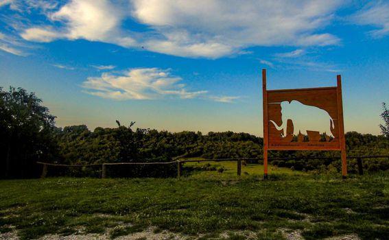 Dolina mamuta, Mohovo - 4