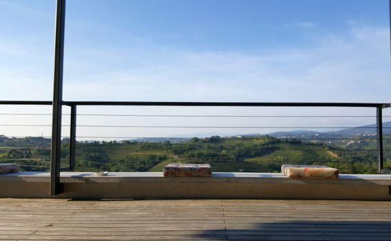 Pogled s terase vinarije na obližnje vinograde