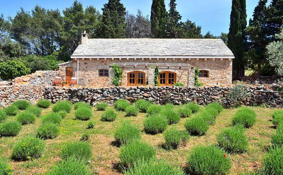 Eko-etno kuća u Humcu na Hvaru - 13