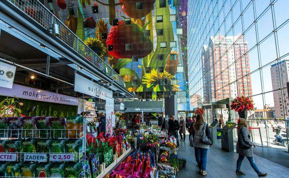 Markthal Rotterdam - 6