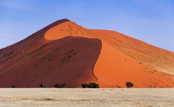 Pješčane dine u Namibiji - 2