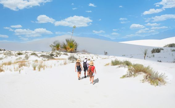 White Sands, New Mexico - 1